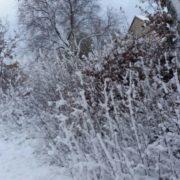 FOTO: SNIJEG ZABIJELIO DALMACIJU, IMA GA I DO 10 CENTIMETARA Ekipe zimske službe od noćas su na terenu, vozačima se preporučuje zimska oprema