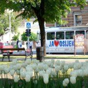 Osijek će umirovljenicima isplatiti uskrsnice od dvije tisuće kuna