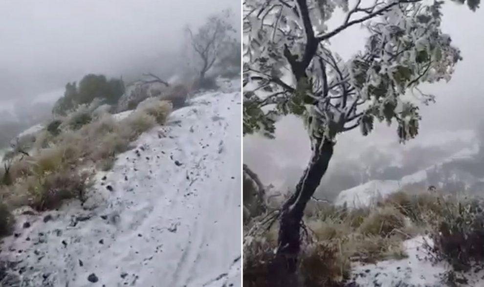 FOTO, VIDEO: SNIJEG ZABIJELIO HAVAJE 'Ovo je prvi put u povijesti. Nikad nije pao na tako niskoj nadmorskoj visini'