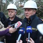 Split: Započeli radovi u Park šumi Marjan i uklanjanje stabala oboljelih od potkornjaka