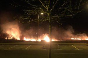 Požar u Novom Jelkovcu: Gorjeli su trava i nisko raslinje