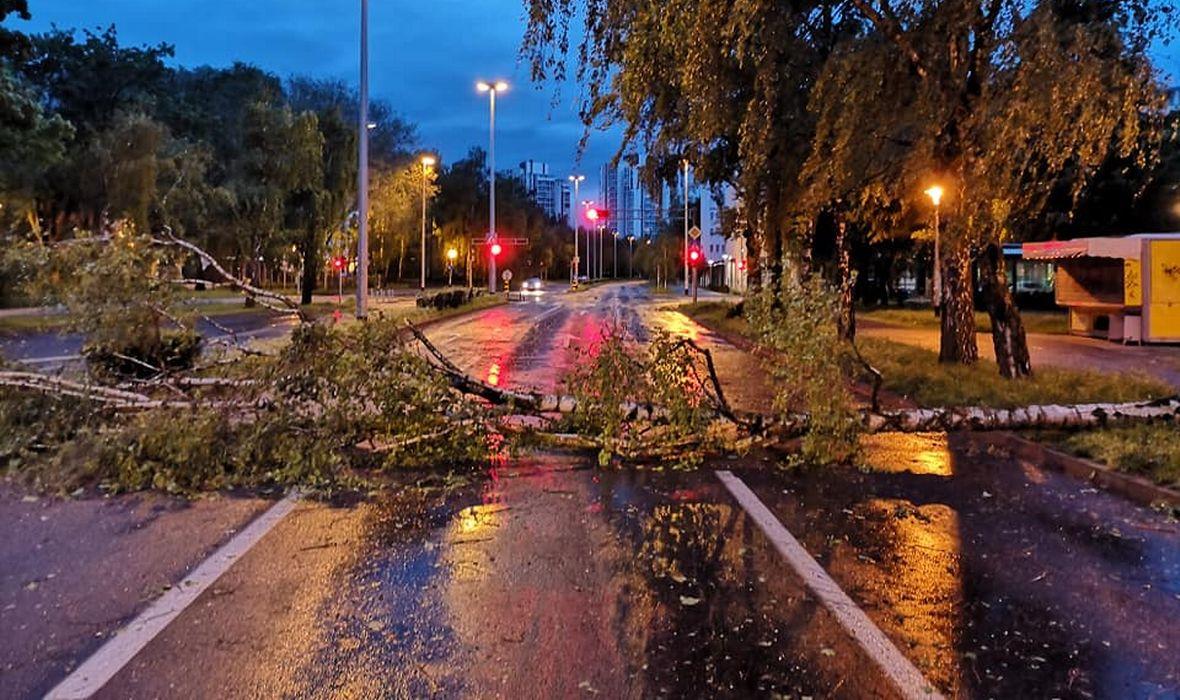 TOTALNI KAOS U ZAGREBU ZBOG OLUJNOG VJETRA Policija upozorava građane: 'Bez potrebe ne izlazite iz domova'