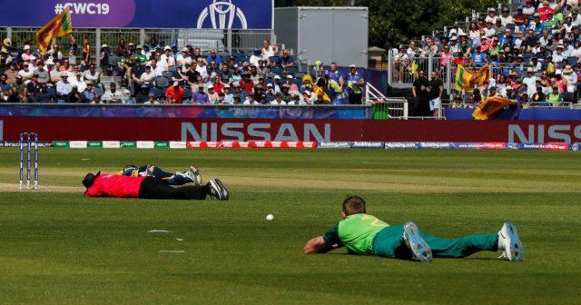 Roj pčela prekinuo utakmicu Svjetskog kupa u kriketu