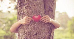 Gdje ima drveća, manja je smrtnost od bolesti srca