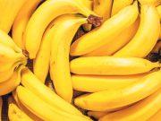 Bananama prijeti izumiranje, Kolumbija proglasila izvanredno stanje!