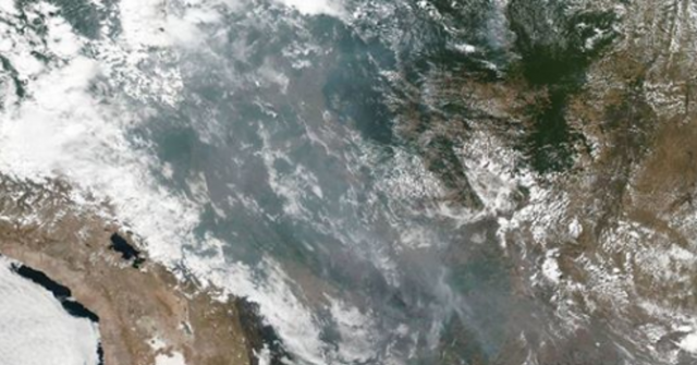 Izašle tajne informacije: Brazilski predsjednik planirao uništavanje Amazone?
