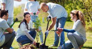 Želiš više drveća u svom naselju? Evo kako to možeš ostvariti!