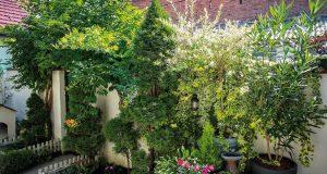 Tajni vrt u dvorištu u samom centru grada Osijeka