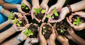 Povodom Svjetskog dana sadnje drveća donosimo tri priče koje će te dirnuti