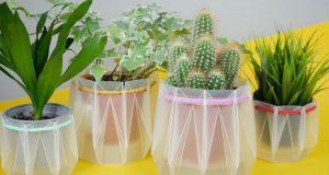 Genijalne posude od recikliranog materijala koje štite biljke od isušivanja