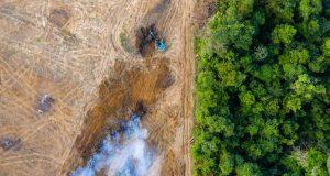 Počeli istraživati poljoprivrednike osumnjičene za potpalu požara u Amazoni