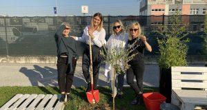 Pridružili smo se Danima kolektivne sadnje drveća i posadili Stanka