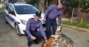 NEUOBIČAJEN RADNI DAN Policajci iz Ivanić Grada pronašli dva izgubljena psa pa se dali u potragu za vlasnikom...