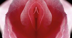 Istina o klitorisu: Nije stvoren samo za užitak