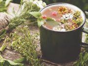 7 biljnih čajeva i njihove dobrobiti za zdravlje: Za svaku tegobu jedna biljka