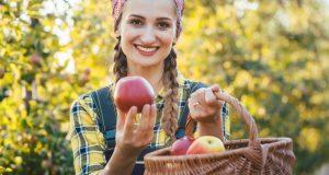 Besplatno voće u Varaždinu: Izgradit će prvi javni voćnjak