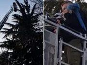 Spašavali papigu Jacka: Dosta mu je izolacije pa je - zbrisao!