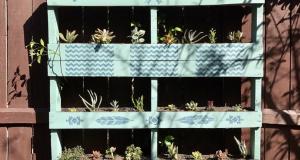 Saznajte kako izraditi vertikalni vrt od drvene palete