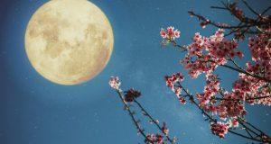 Ružičasti pun Mjesec: Provjeri kako će utjecati na tvoj horoskopski znak