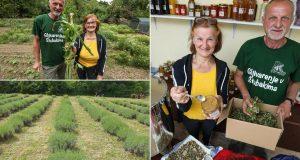 'Mirovinu provodimo sadeći bilje za čajeve, ulja, kreme...'