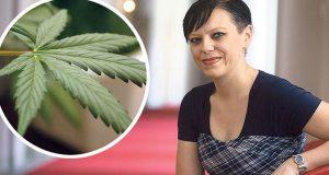 'LEGALIZACIJOM KONOPLJE U 10 GODINA OTVORIT ĆE SE 100.000 RADNIH MJESTA' Osvoji li vlast, SDP bi već u prvih mjesec dana donio Lex Cannabis