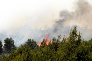 Vatrogasci upozoravaju: Velike su opasnosti od izbijanja požara idućih dana, ne palite vatru!
