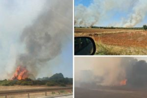 Požar kod Pule: Vatra prijeti kućama, navodno gori na više mjesta, dim se širi posvuda