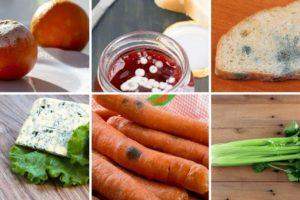 Lista namirnica koje ne morate baciti čim vidite plijesan i one kojih se morate odmah riješiti